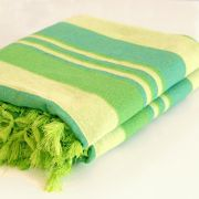 Indian sofa or bed cover green