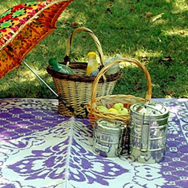 SPECIAL INDIAN PICNIC
